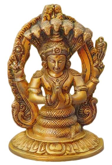 shakti goddess